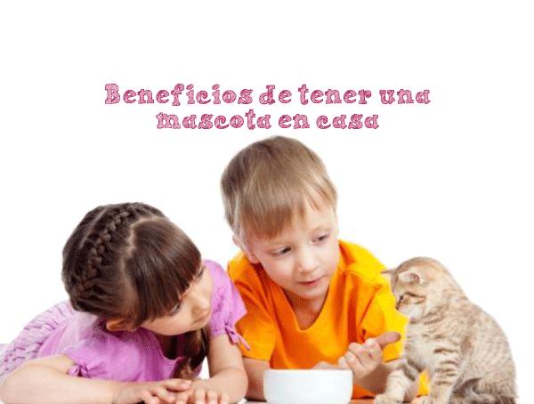 Bebes-y-mascotas-Belino