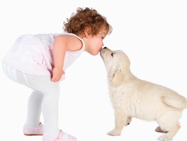 mascotas-y-niños-Belino